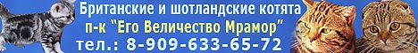 ���������� � ����������� ������ ��������� �������, �������� ��� ���������� ������ ���.8-909-633-65-72.